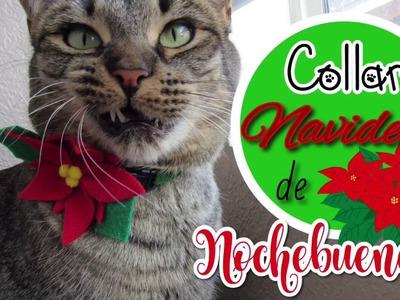 DIY Collar Navideño de Flor de Noche Buena