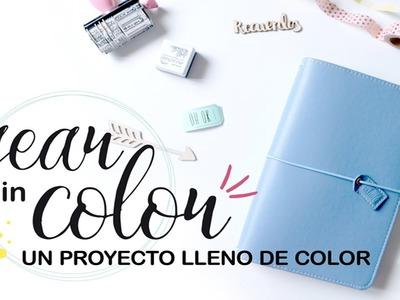 Year In Color: Presentación