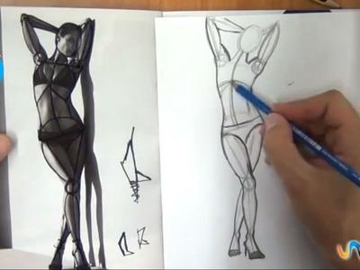 Cómo dibujar los músculos del cuerpo humano (2º parte)