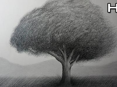 Cómo Dibujar un Árbol Realista a lápiz Paso a Paso Para niños y Principiantes - Tutorial