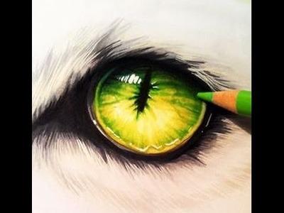 Dibujo ojo de lobo