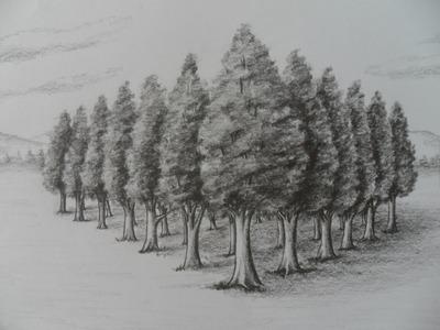 Como Dibujar Árboles en Perspectiva. Estudio dos puntos de fuga.