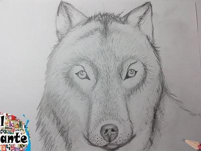 Como Dibujar un Lobo paso a paso [El Dibujante]