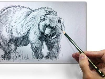 Como Dibujar un Oso Realista a Lapiz, tecnicas de dibujo paso a Paso,