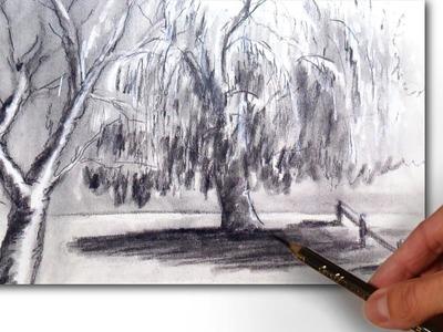 Cómo Dibujar un Paisaje con Sauces al Carboncillo: Técnica de Dibujo