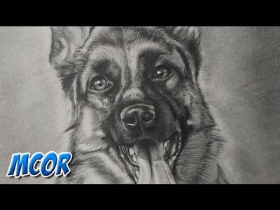 Como Dibujar un Perro Pastor Aleman