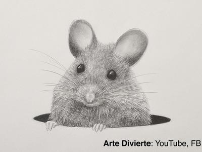 Cómo dibujar un ratón a lápiz - Pelo animal