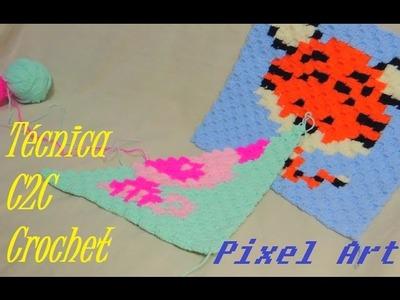 Técnica Corner to Corner en Español Crochet - Pixel Art
