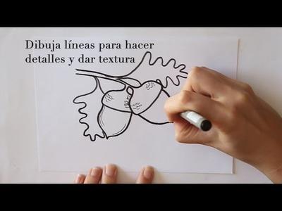 Cómo dibujar Bellotas Dibuja Conmigo Dibujos de Otoño