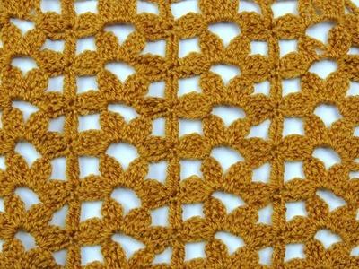 Crochet: Punto Combinado # 18