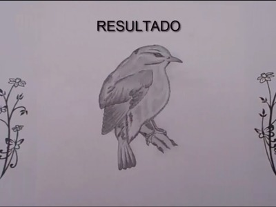 Como dibujar un pajaro | How to draw a bird