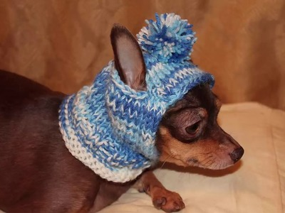 Suéteres a crochet para perritos