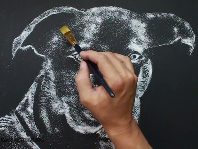 How to Draw a Dog - Como Dibujar un perro - Dibujando con Sal - Drawing with Salt