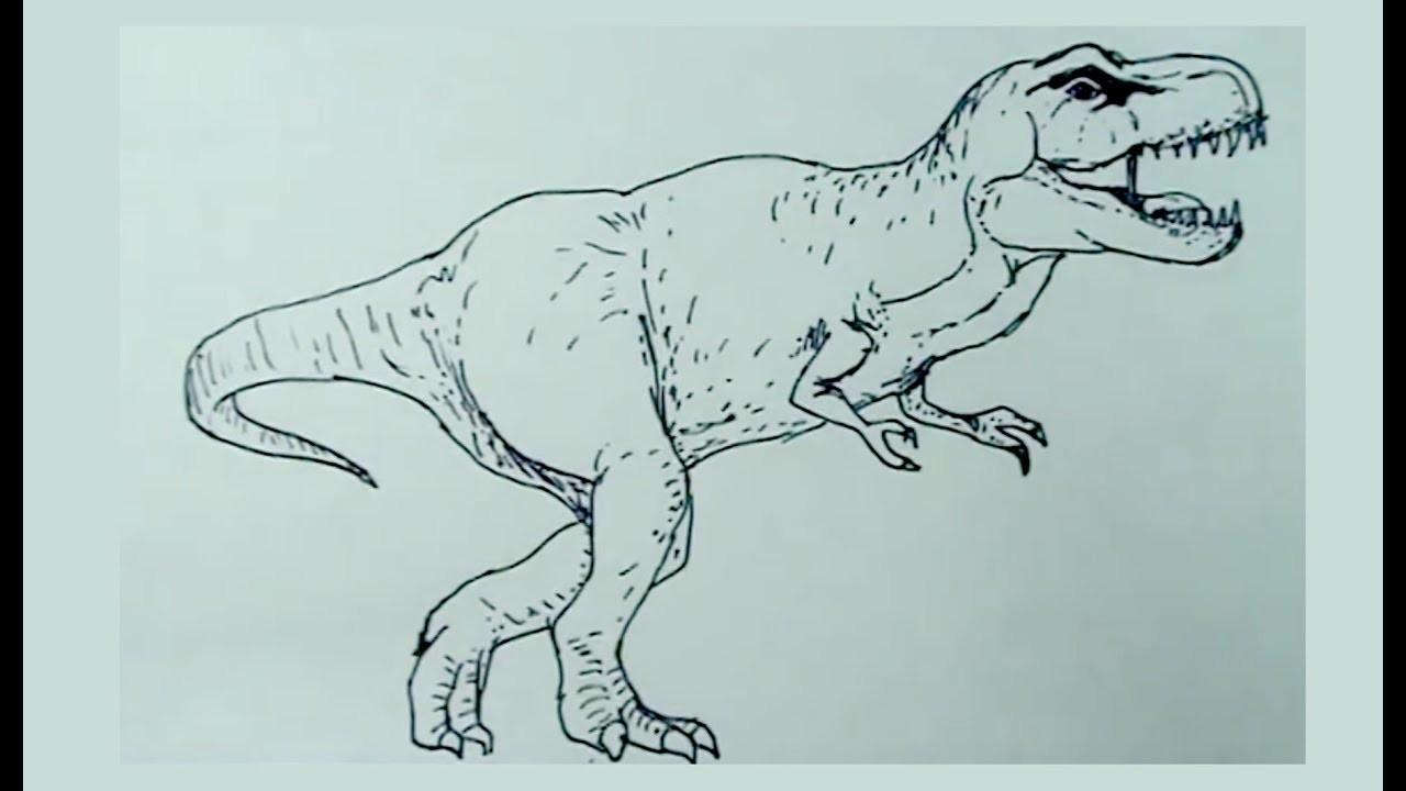 Dibujos De Dinosaurios Fácil 6.8