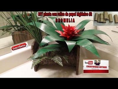 DIY PLANTA CON ROLLOS DE PAPEL HIGIENICO#2 BROMELIA