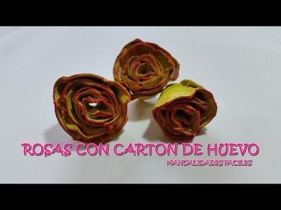 Rosas de carton de Huevo 01  Manualidades Faciles