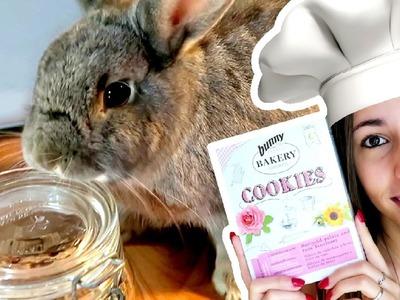 Galletitas caseras para conejos - DIY