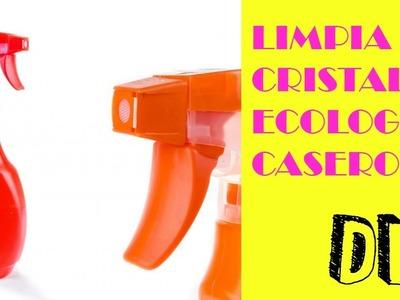 DIY : Como hacer un Limpiador de Cristales y Espejos CASERO Y ECOLOGICO   ♡  How-to by FSandMe