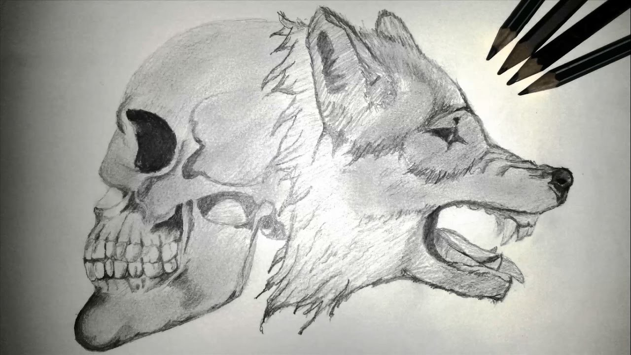 Como Dibujar Un Lobo Con Un Cráneo How To Draw A Wolf With A Skull