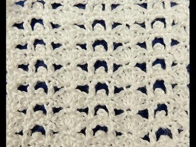 Crochet: Punto Conchitas Combinado # 1