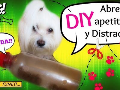 DIY Abre apetito y Distractor para perros, coton de tulear I Lorentix