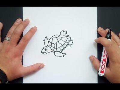Como dibujar una tortuga paso a paso 6   How to draw a tortoise 6