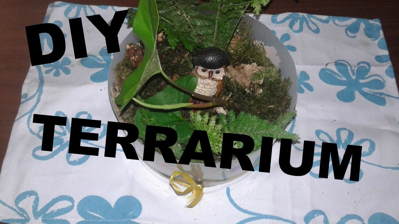 Decoración del Hogar.DIY Terrario con materiales reciclados(With English subs)