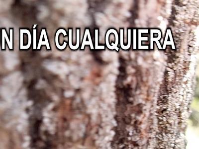 REFLEXIONES DE UN DÍA CUALQUIERA | NURIA'S DIY
